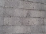 屋根カビ3.jpg
