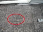 屋根 (3).jpg