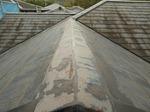 屋根ばんきん.jpg