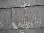 屋根剥がれ (1).jpg