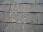 屋根剥がれ (2).jpg