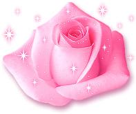 photo_rose025.jpg